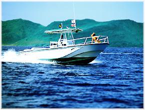 Martha 39 s vineyard watersports for Martha s vineyard fishing charters